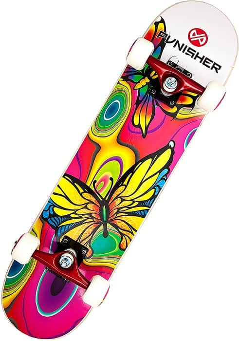 2 Best Punisher Skateboards Reviews for Beginners 1